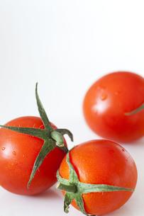 tomatoの写真素材 [FYI00044376]