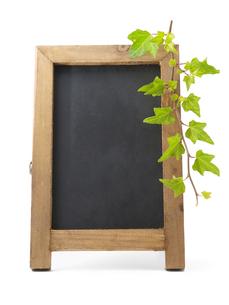 黒板と緑の葉の素材 [FYI00044498]