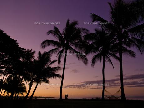 カウアイ島の朝焼けの写真素材 [FYI00044532]