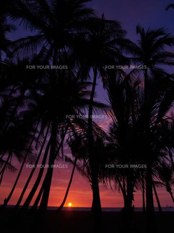 ハワイ島 ワイコロアの夕陽の素材 [FYI00044569]