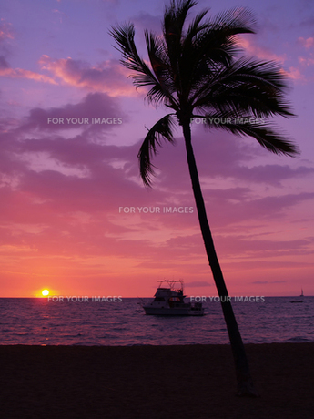 ハワイ島 ワイコロアの夕陽の素材 [FYI00044571]
