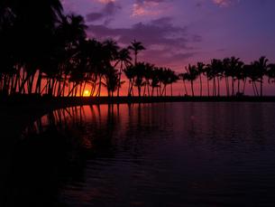 ハワイ島 ワイコロアの夕陽の素材 [FYI00044575]