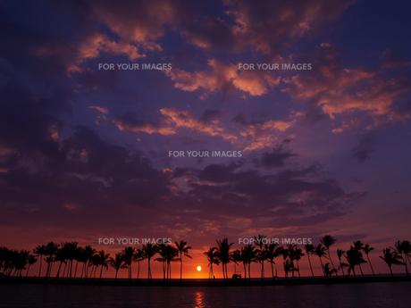 ハワイ島 ワイコロアの夕陽の素材 [FYI00044582]