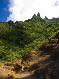 カウアイ島のカララウトレイルの素材 [FYI00044583]