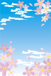 桜と青空と雲の素材 [FYI00044588]
