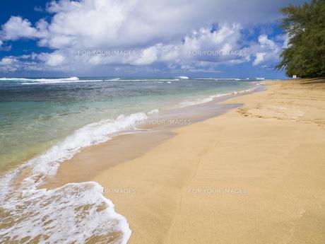 カウアイ島のケエビーチの素材 [FYI00044590]