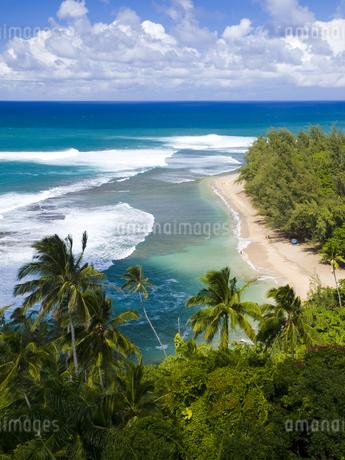 カウアイ島のケエビーチの素材 [FYI00044596]