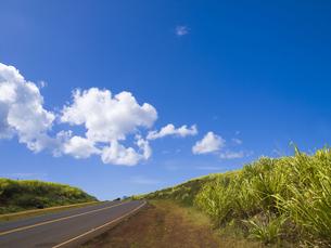 カウアイ島ポイプの道の素材 [FYI00044599]