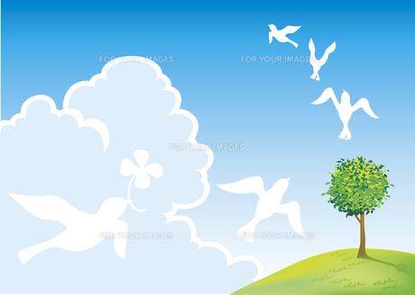 草原と青空とハトの素材 [FYI00044607]