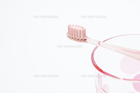 ピンクのコップと歯ブラシの写真素材 [FYI00044617]