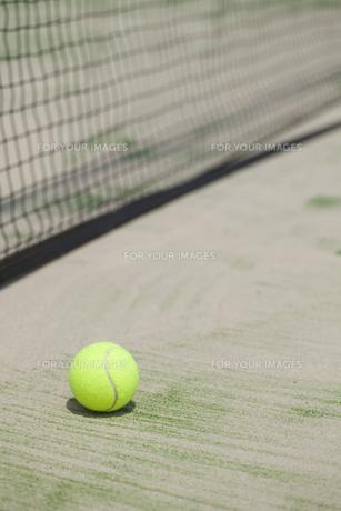 テニスボールとテニスコートの写真素材 [FYI00044682]