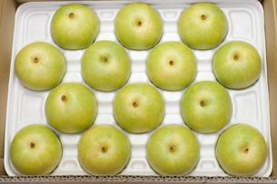 箱に詰められた二十世紀梨の素材 [FYI00044689]