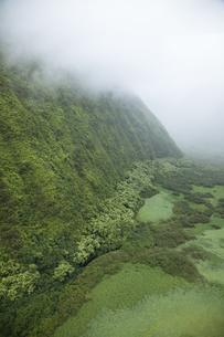 ハワイ島のワイマヌ渓谷の素材 [FYI00044735]