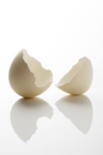 卵の殻の写真素材 [FYI00045137]