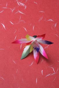 羽子板の羽の写真素材 [FYI00045256]
