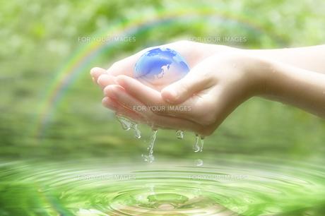 エコロジーの写真素材 [FYI00046146]