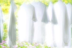 洗濯の写真素材 [FYI00046550]