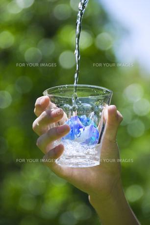 エコロジーの写真素材 [FYI00046816]
