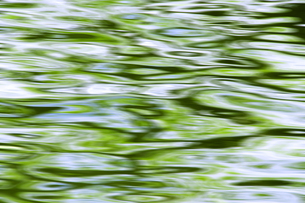 新緑の水面の写真素材 [FYI00046842]