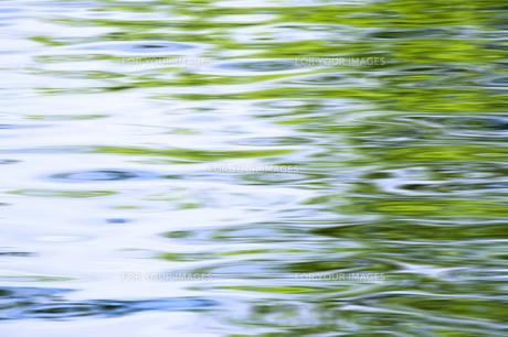 新緑の水面の写真素材 [FYI00046847]