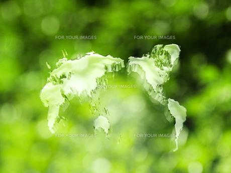 エコロジーの写真素材 [FYI00046855]