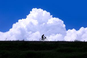 夏空と自転車の写真素材 [FYI00046996]