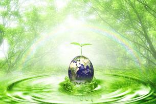エコロジーの写真素材 [FYI00047339]