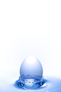 エコロジーの写真素材 [FYI00047734]