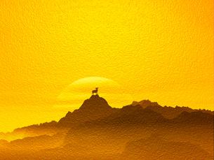 日の出と羊の写真素材 [FYI00048074]
