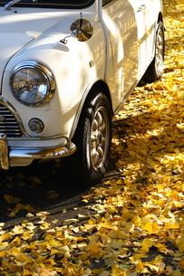 秋色miniの写真素材 [FYI00048351]