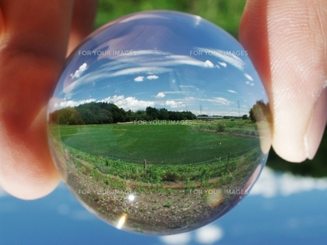 景色玉 風緑景の写真素材 [FYI00048465]