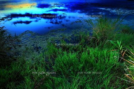 夜明けの水辺の素材 [FYI00048473]