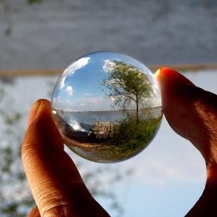 景色玉 柳と桟橋の写真素材 [FYI00048517]