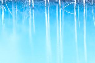 Blue in Blueの写真素材 [FYI00049224]