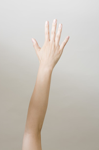 女性の手の写真素材 [FYI00049584]