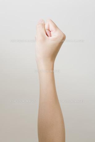 女性の手の写真素材 [FYI00049585]