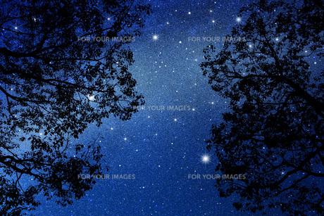 星空の写真素材 [FYI00049626]