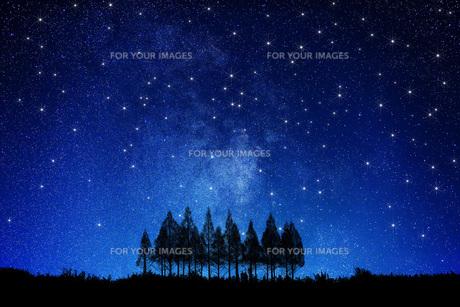 星空と木の写真素材 [FYI00049638]