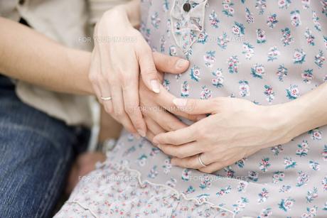 妊婦の写真素材 [FYI00049714]