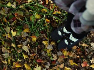 落ち葉と女の子の足元の素材 [FYI00050493]