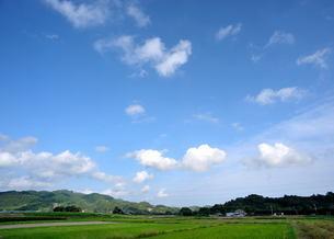 田園の青空と雲の写真素材 [FYI00050548]