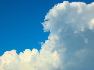 空の写真素材 [FYI00050595]