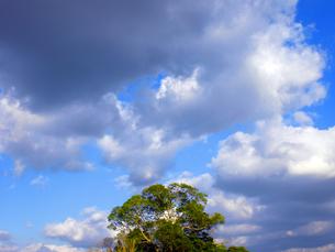 空の写真素材 [FYI00050665]