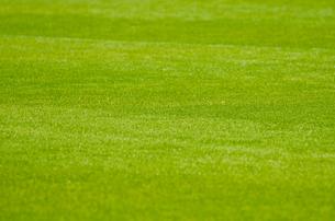 サッカーグラウンドの写真素材 [FYI00050707]