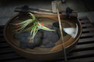 京都の和の光景の素材 [FYI00050793]