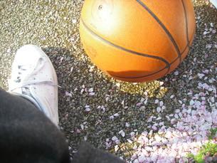 花びらとバスケットボールの写真素材 [FYI00050920]