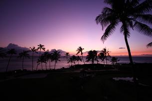 ハワイ島の夕暮れの写真素材 [FYI00050997]