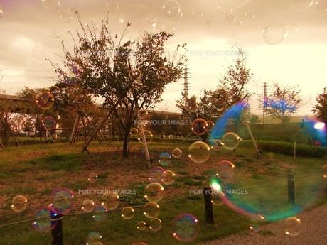 bubbleの写真素材 [FYI00051003]