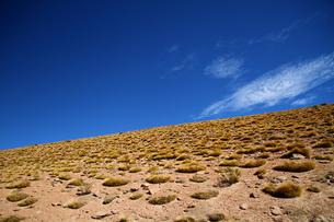 乾いた大地と青空の写真素材 [FYI00051046]