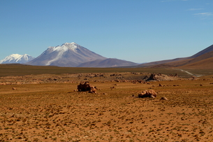 荒涼とした大地と雪を被った山の写真素材 [FYI00051047]